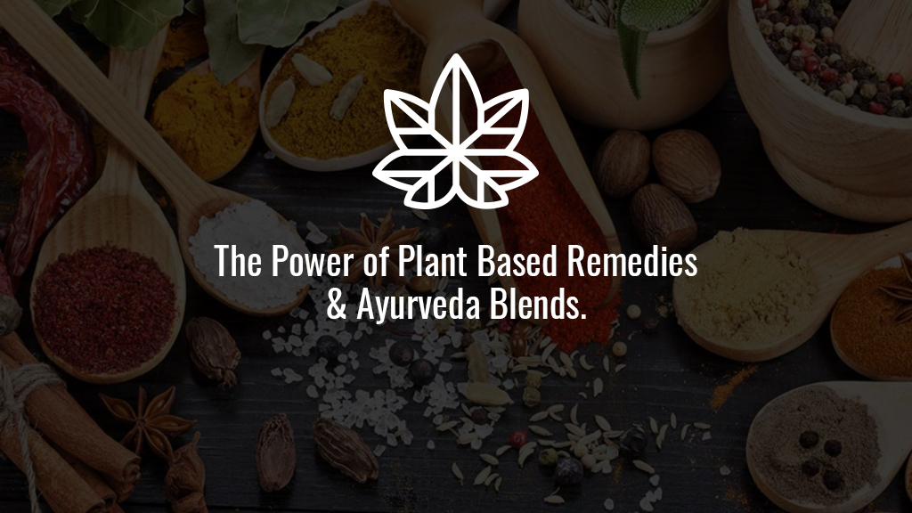 The-Power-of-Plant-Based-Remedies-Ayurveda-Blends