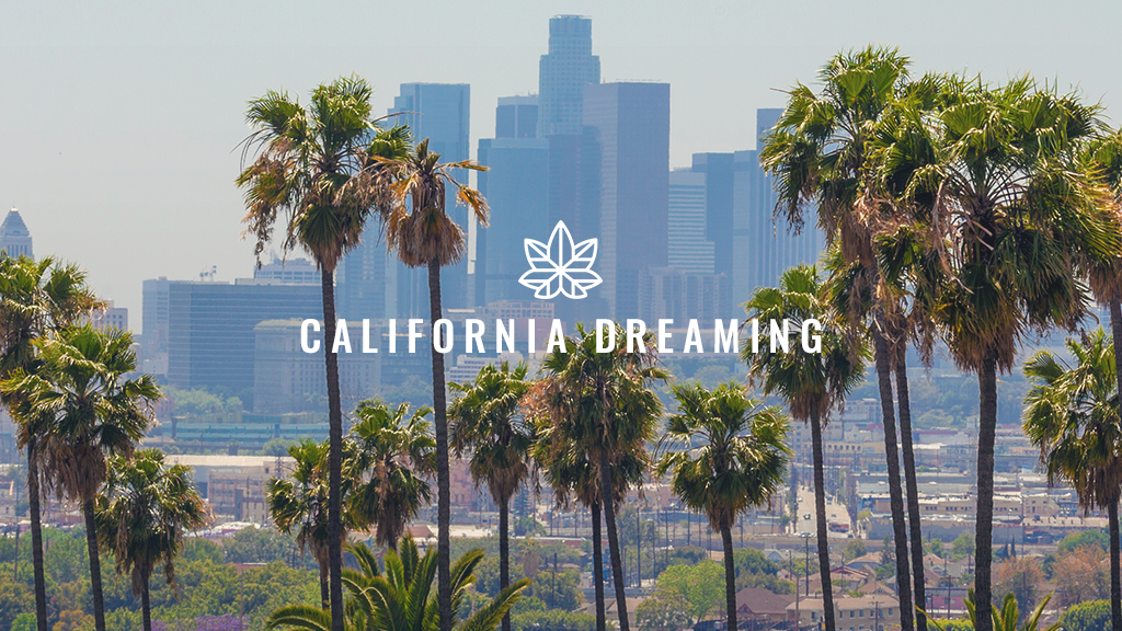 The Root of It All - California Dreaming